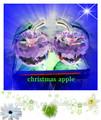 manzana de cristal violeta para la decoración de navidad