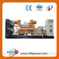 biogas generator supplyer