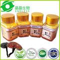 esporas de hongo reishi cápsula de aceite de