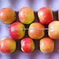 ReMai manzana, fresco 2014
