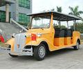 Persona 8 carrito de golf eléctrico de la batería de litio precio( lt- s8. Fa)