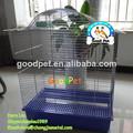 La exportación de aves de jaula libre- muestra de gran tamaño de alambre de la jaula de loro