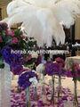 pluma de avestruz para la decoración de la boda