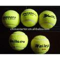 Pelota de tenis del entrenamiento
