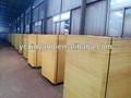 Película enfrentou a madeira compensada, marine madeira compensada para a construção