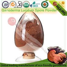 lingzhi ganoderma lucidum extracto en polvo de esporas