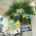 artificial palmeira de coco fabricantes de plantas