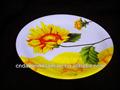 Platos de melamina 9.5 pulgadas y platos de costado