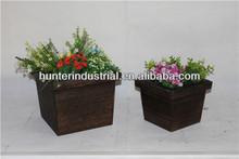 decoración de macetas de plantas de interior