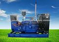 Sistema de la energía del gas natural