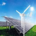 las ventas caliente 600w generador de viento