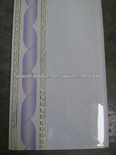 Plástico decorativo de PVC del techo para Diseño Interior Moderno
