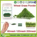 Fuente de la fábrica 100% natural y puro de alta calidad de trigo en polvo jugo