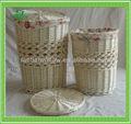cesta del sauce lavandería