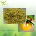 100% natural de la fruta garcinia cambogia extracto
