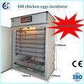 ce aprovado automática 440 incubadorasdeovo para frango pássaro incubadorasdeovo