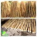 palo de bambú naturales de apoyo