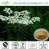 /p-detail/a-base-de-hierbas-de-la-medicina-del-sexo-desde-osthole-com%C3%BAn-cnidium-extracto-de-fruta-300002766057.html