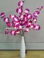 púrpura flor de orquídea de luces