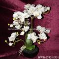 orquídeas de flores artificiais com maconha