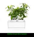 De alta tecnologia produtos agrícolas mini inteligente jardim interior