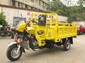 Diesel/gasolina motor triciclo de carga 3 rodas de motocicleta