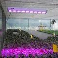 de alta potencia led de apolo de luces de crecimiento de las plantas