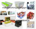 Correx caja de plástico para el envasado de uva, espárragos, el brócoli, setas o piedra tropical de frutas