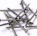 Clavos comunes/común de construcción de alambre del clavo