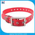 collar decorativo perro