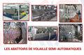 Les Abattoirs de Volaille Semi-Automatiques