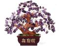 Cristal de color púrpura de árbol, de cristal de oro del árbol de dinero, el árbol de jade, la suerte del árbol de dinero