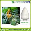La piel- para blanquear el ácido ursólico por polvo de hoja de níspero
