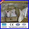 Vendo jaulas para cria de conejos