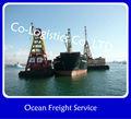 Carga de mar de China a Argentina