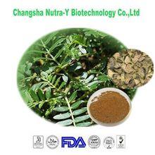 natural planta tribulus terrestris extracto en polvo