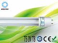 t5 luz fluorescente (t5 in t8)