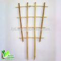 bambú de la naturaleza para el apoyo de la planta