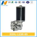 motor eléctrico de la c.c. 12V D59L-1230-65