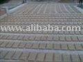 Antiguos suelos de terracota azulejos& adoquines