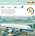 Los servicios de carga aérea de China