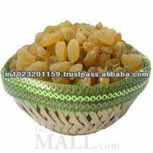 Uva seco/seco natural de uva/uva/seco de oro uva/india uvas secas
