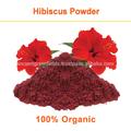 Pure poudre d'hibiscus