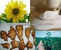 alcachofa inulina 90 % jerusalén