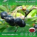 Acai berry extracto en polvo, la fruta acai berry extracto