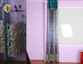 Classcial pared de cortina para hoteles/residencias