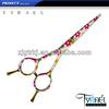 /p-detail/Couleur-des-cheveux-professionnel-ciseaux-%C3%A0-pansement-avec-imprim%C3%A9-de-fleurs-up-102-500002567509.html