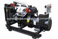 20kva grupo generador de gas natural