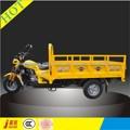 gasolina motorizado de três rodas de motocicleta