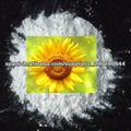 desinfectante TCCA 90% de polvo de